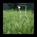 uncut_lawn